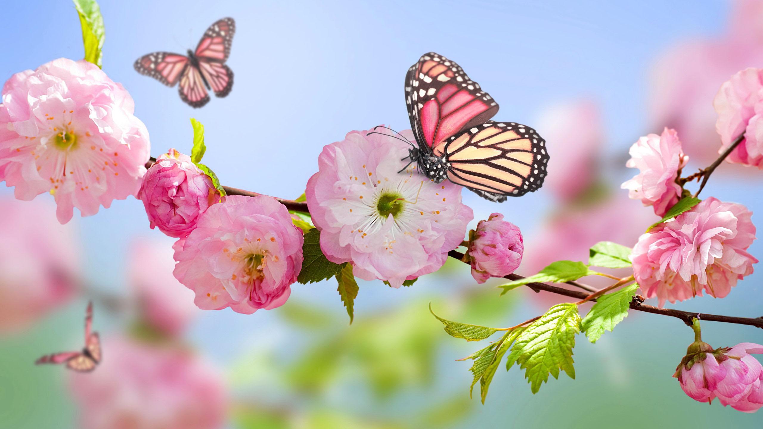 Capispalla per la primavera